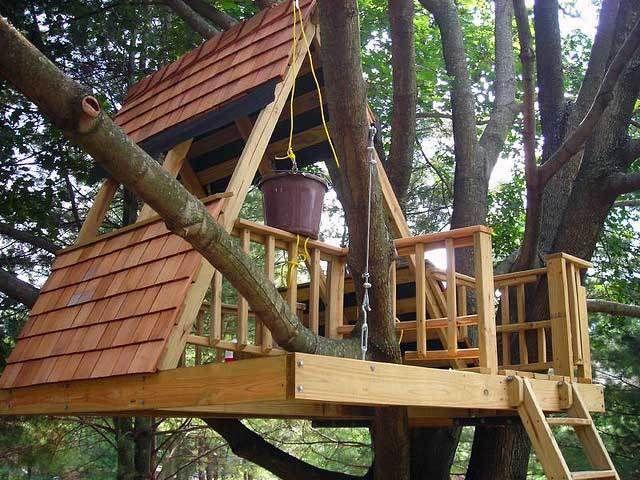 Jak postavit d tem vysn n dome ek na strom bdln cz - Como construir una casa en un arbol ...